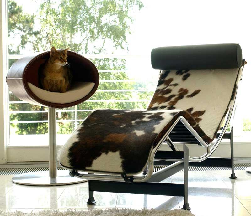 Foto: Pet-Interiors