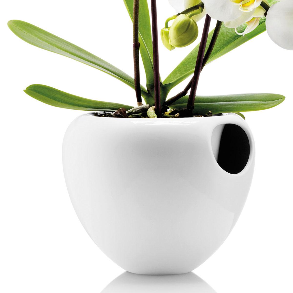 selbstw ssernder orchideentopf von eva solo designs2love. Black Bedroom Furniture Sets. Home Design Ideas